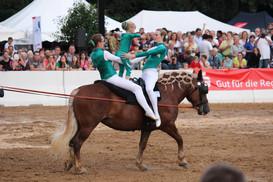 Ellwanger Pferdetage